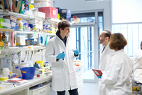 Students in the Lab. Picture: Max Planck Institute for Developmental Biology
